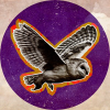Mountainastrologer.com logo