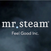 Mrsteam.com logo