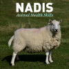 Nadis.org.uk logo