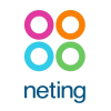 Neting.it logo