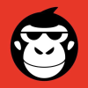 Newsmonkey.be logo
