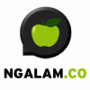 Ngalam.co logo