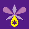 Orchidseed.co.jp logo