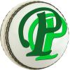 Pakpassion.net logo