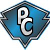 Paladinscounter.com logo