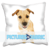 Picturestofabric.co.uk logo