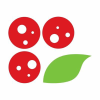 Pizzavillage.it logo