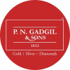 Pngadgilandsons.com logo