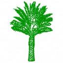 Palm Communities