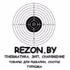 Rezon.by logo