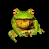 Savethefrogs.com logo