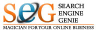 Searchenginegenie.com logo