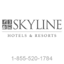 Skyline International Development
