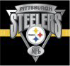 Steelerfury.com logo