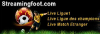 Streamingfoot.com logo