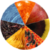 Tcpermaculture.com logo