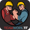 Teamwork.tf logo