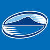 Theblues.co.nz logo