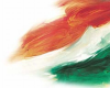 Theindianvoice.com logo