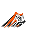 Tigersanitation.com logo