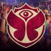 Tomorrowlandbrasil.com logo