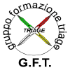 Triage.it logo