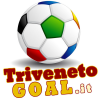 Trivenetogoal.it logo