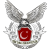 Turkishairforce.org logo