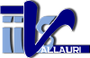 Vallauri.edu logo