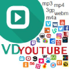 Vdyoutube.com logo