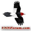 Vnnforum.com logo