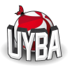 Volleybusto.com logo