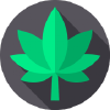 Volunteeralliance.org logo