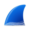 Wireshark.org logo
