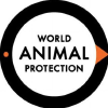 Worldanimalprotection.org.in logo