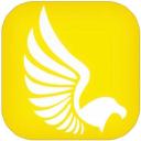Falcon Expenses, Inc.