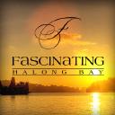 Fascinating Halong Bay