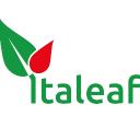Italeaf S.p.A.
