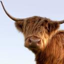 Visit Scotland - Rural Tourism Infrastructure Fund