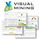 Visual Mining