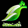 Zhwandoon.tv logo