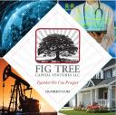FIG Tree Capital Ventures