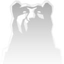 Winter Bear Studio