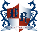 Hue Revolution, Inc logo