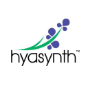Hyasynth Bio logo icon