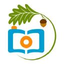 Imoments logo icon