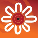 Indigenous Allied Health Australia logo