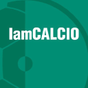 I Am Calcio logo icon