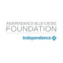 IBX Foundation Company Logo