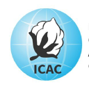 Icac logo icon